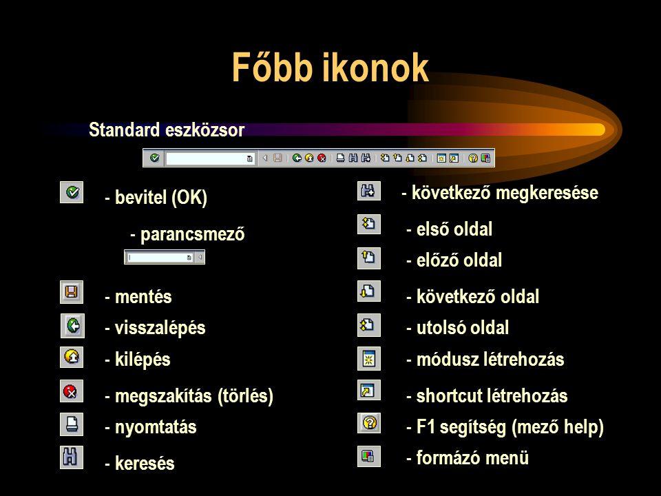 Főbb ikonok Standard eszközsor - parancsmező - bevitel (OK) - mentés - visszalépés - kilépés - megszakítás (törlés) - nyomtatás - keresés - következő