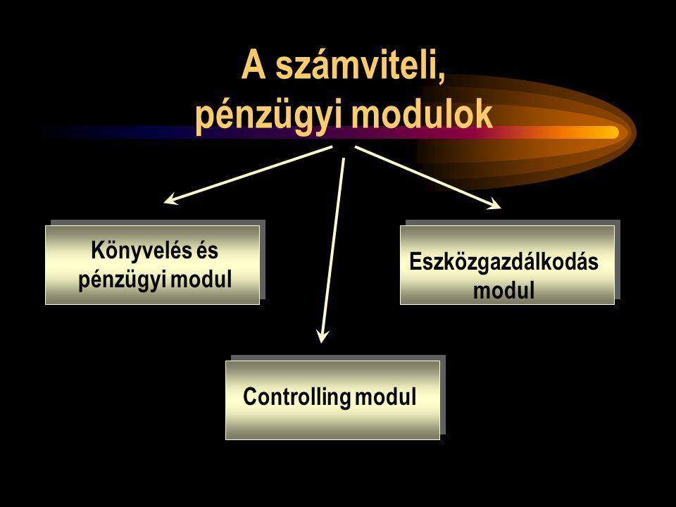 Számviteli, Pénzügyi modulok Feladat: az üzleti tranzakciók pénzügyi folyamatainak kezelése – könyvelési és pénzügyi modul: külső könyvelési és számviteli funkciókért felelős – eszközgazdálkodás modul: a vállalat eszközeivel kapcsolatos műszaki, gazdasági tevékenységek kezelése – controlling modul: a vállalat belső könyveléséért, költséggazdálkodásáért felelős