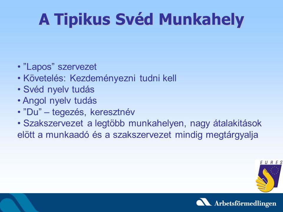 """A Tipikus Svéd Munkahely """"Lapos"""" szervezet Követelés: Kezdeményezni tudni kell Svéd nyelv tudás Angol nyelv tudás """"Du"""" – tegezés, keresztnév Szakszerv"""