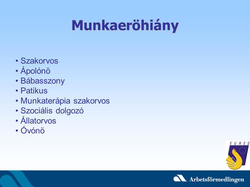 Munkaeröhiány Szakorvos Ápolónö Bábasszony Patikus Munkaterápia szakorvos Szociális dolgozó Állatorvos Óvónö