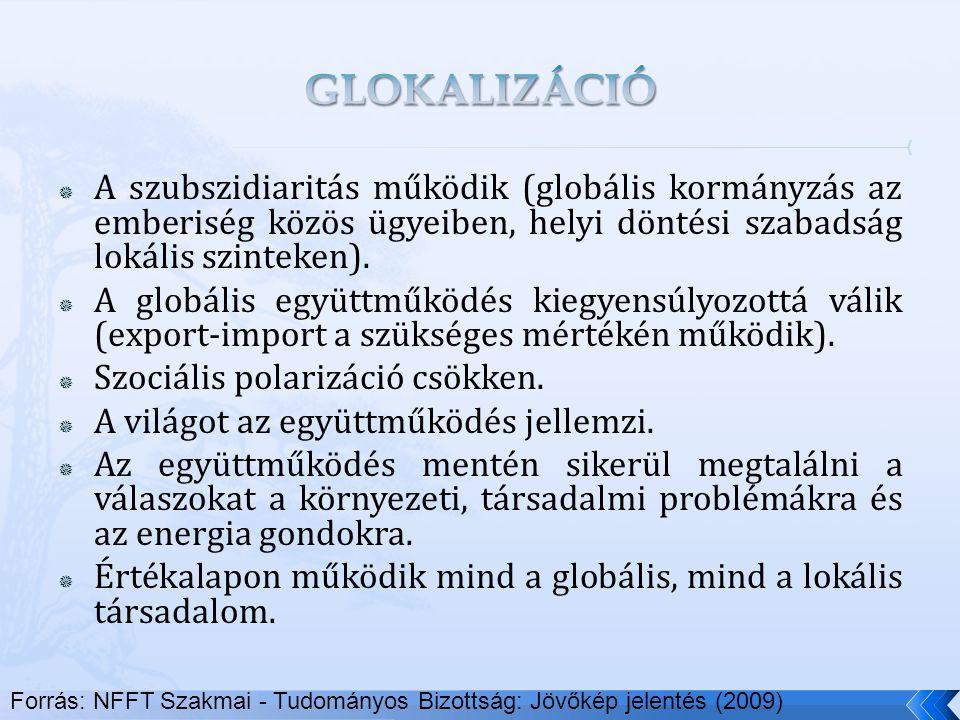  A szubszidiaritás működik (globális kormányzás az emberiség közös ügyeiben, helyi döntési szabadság lokális szinteken).