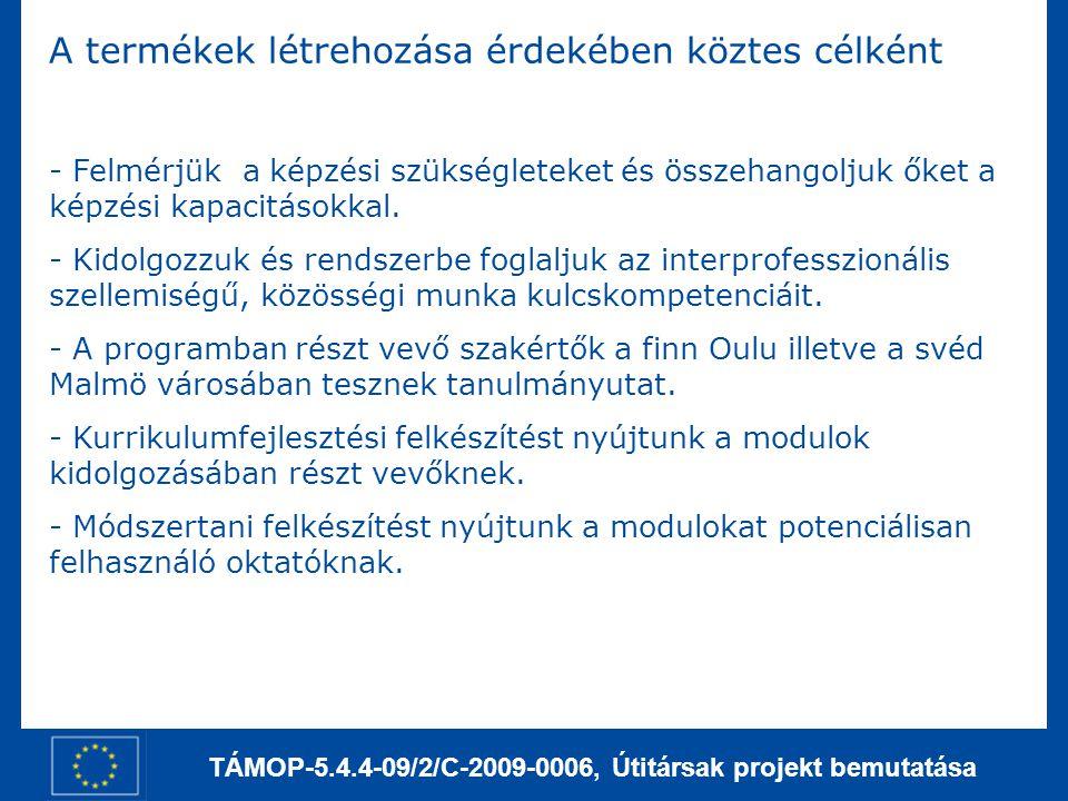 TÁMOP-5.4.4-09/2/C-2009-0006, Útitársak projekt bemutatása A termékek létrehozása érdekében köztes célként - Felmérjük a képzési szükségleteket és öss
