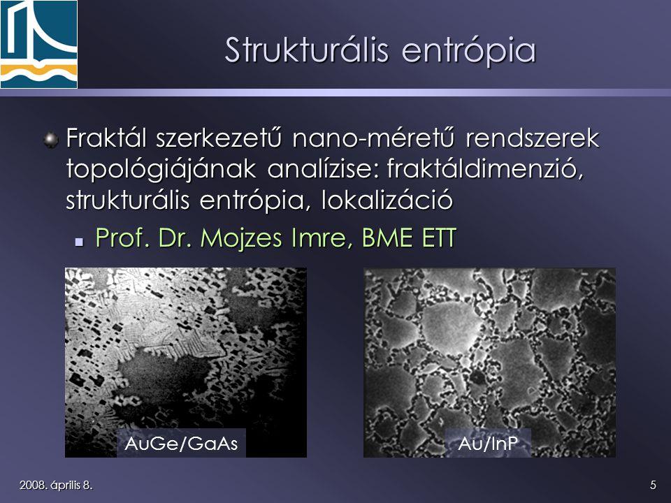52008. április 8. Strukturális entrópia Fraktál szerkezetű nano-méretű rendszerek topológiájának analízise: fraktáldimenzió, strukturális entrópia, lo