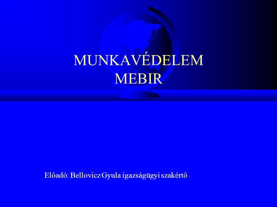 MUNKAVÉDELEM MEBIR Előadó: Bellovicz Gyula igazságügyi szakértő