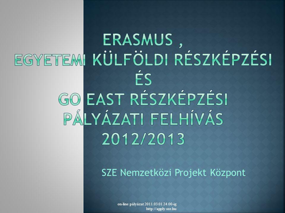 SZE Nemzetközi Projekt Központ on-line pályázat 2011.03.01 24.00-ig http://apply.sze.hu