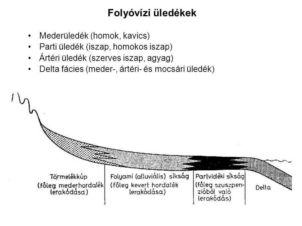 Folyóvízi üledékek Mederüledék (homok, kavics) Parti üledék (iszap, homokos iszap) Ártéri üledék (szerves iszap, agyag) Delta fácies (meder-, ártéri-