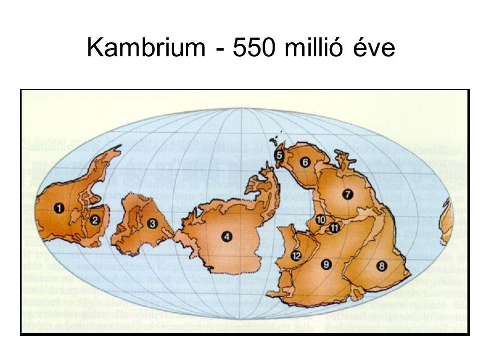 Az előrenyomuló tenger üledékképzése A visszahúzódó tenger üledékképzése