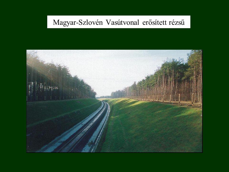 Magyar-Szlovén Vasútvonal erősített rézsű