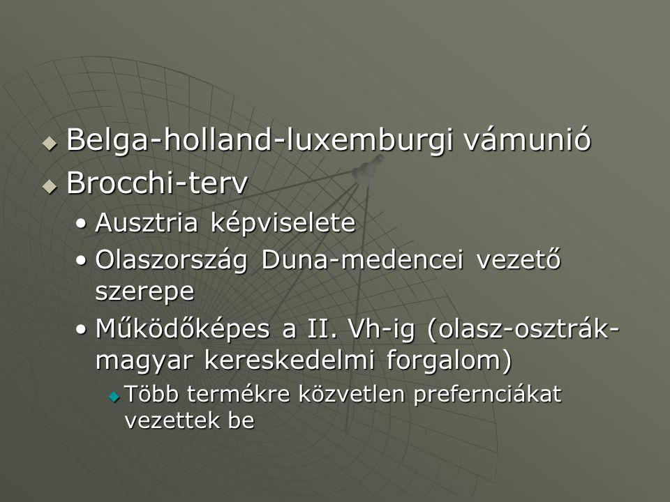  Belga-holland-luxemburgi vámunió  Brocchi-terv Ausztria képviseleteAusztria képviselete Olaszország Duna-medencei vezető szerepeOlaszország Duna-me