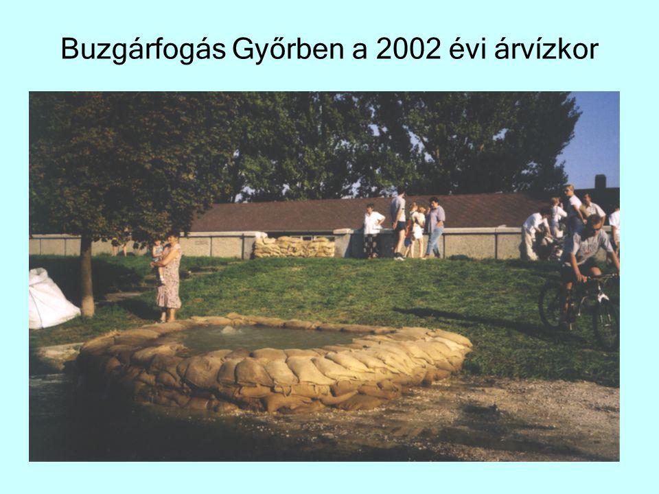 Buzgárfogás Győrben a 2002 évi árvízkor