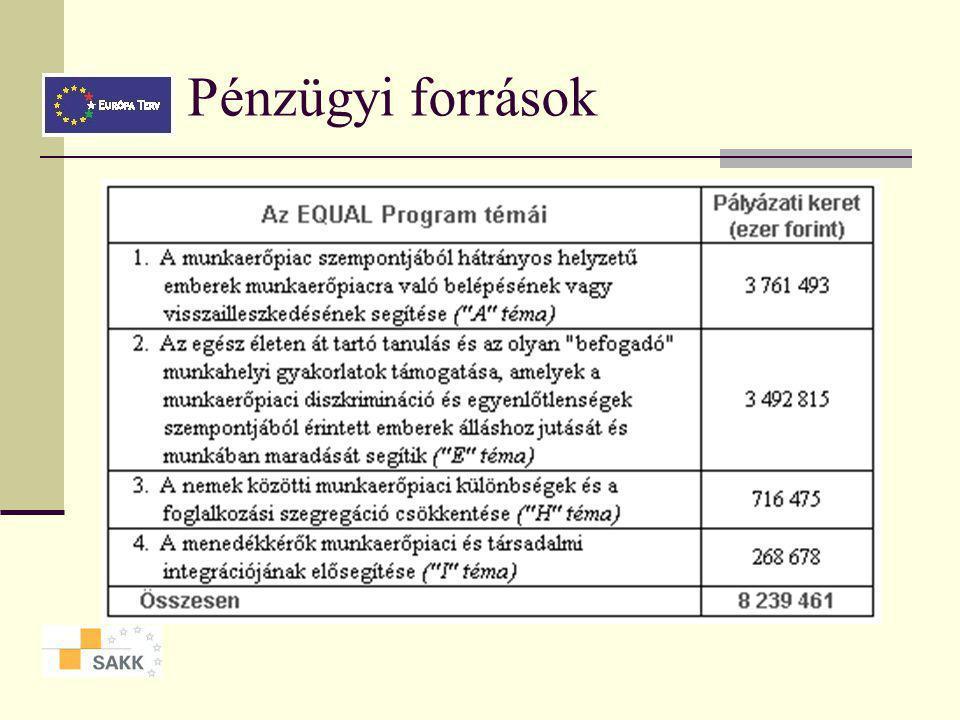 Pályázati kiírás 2004-ben 3 szakasz: előkészítő szakasz, projektvégrehajtás szakasza, a tapasztalatok átadása A pályázat útján kiválasztott fejlesztési partnerségekkel az Irányító Hatóság külön-külön támogatási szerződést köt az előkészítő szakaszra (1.