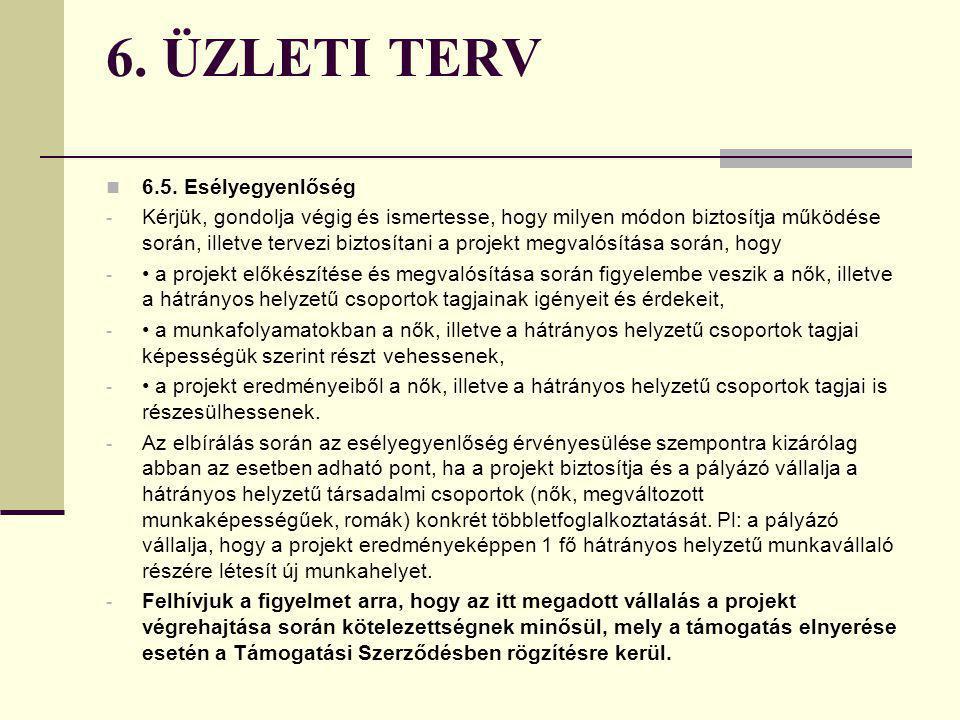 6. ÜZLETI TERV 6.5-6.6. Az esélyegyenlőség és a környezeti fenntarthatóság szempontjainak érvényesítése - A Nemzeti Fejlesztési Terv minden intézkedés