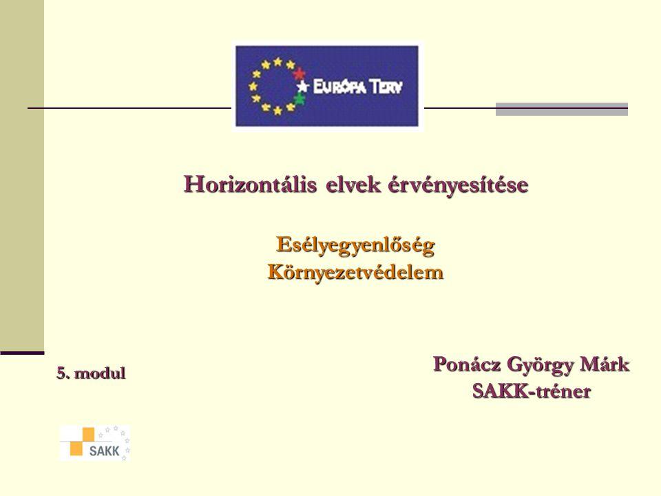 Horizontális elvek érvényesítése Esélyegyenlőség Környezetvédelem 5.