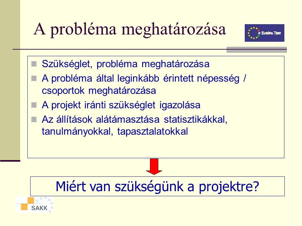 A probléma meghatározása Szükséglet, probléma meghatározása A probléma által leginkább érintett népesség / csoportok meghatározása A projekt iránti szükséglet igazolása Az állítások alátámasztása statisztikákkal, tanulmányokkal, tapasztalatokkal Miért van szükségünk a projektre?