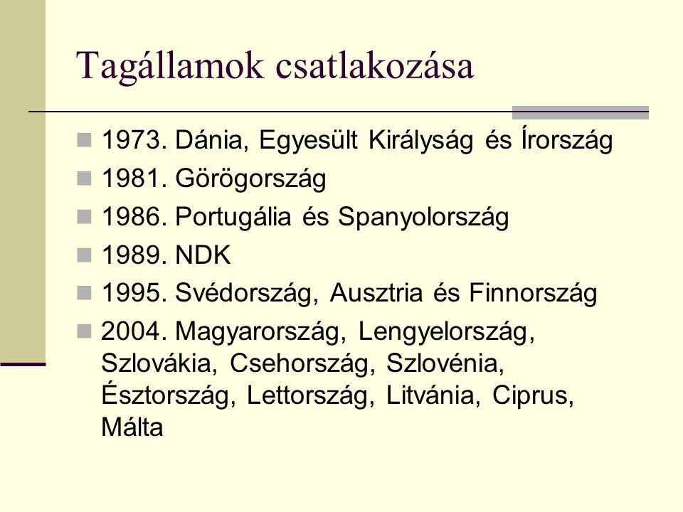 Intézmények fejlődése, szerződések  1993. Maastrichti Szerződés: - létrehozta az Európai Uniót - 1999-ig létrehozta a monetáris uniót, bevezette a kö