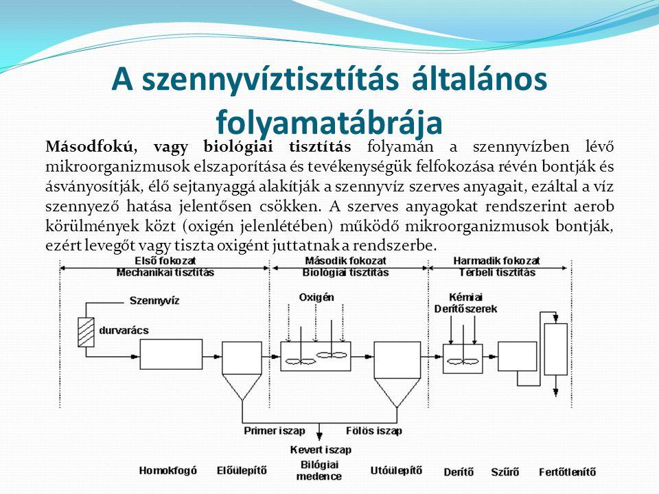 A szennyvíztisztítás általános folyamatábrája Másodfokú, vagy biológiai tisztítás folyamán a szennyvízben lévő mikroorganizmusok elszaporítása és tevékenységük felfokozása révén bontják és ásványosítják, élő sejtanyaggá alakítják a szennyvíz szerves anyagait, ezáltal a víz szennyező hatása jelentősen csökken.