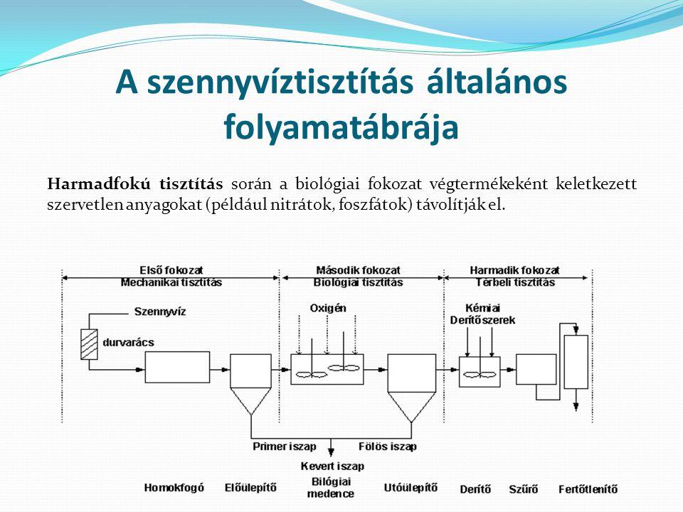 A szennyvíztisztítás általános folyamatábrája Harmadfokú tisztítás során a biológiai fokozat végtermékeként keletkezett szervetlen anyagokat (például nitrátok, foszfátok) távolítják el.