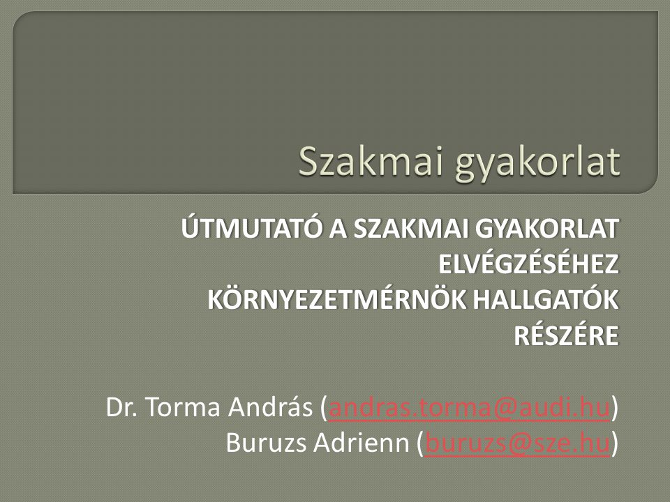 ÚTMUTATÓ A SZAKMAI GYAKORLAT ELVÉGZÉSÉHEZ KÖRNYEZETMÉRNÖK HALLGATÓK RÉSZÉRE Dr.
