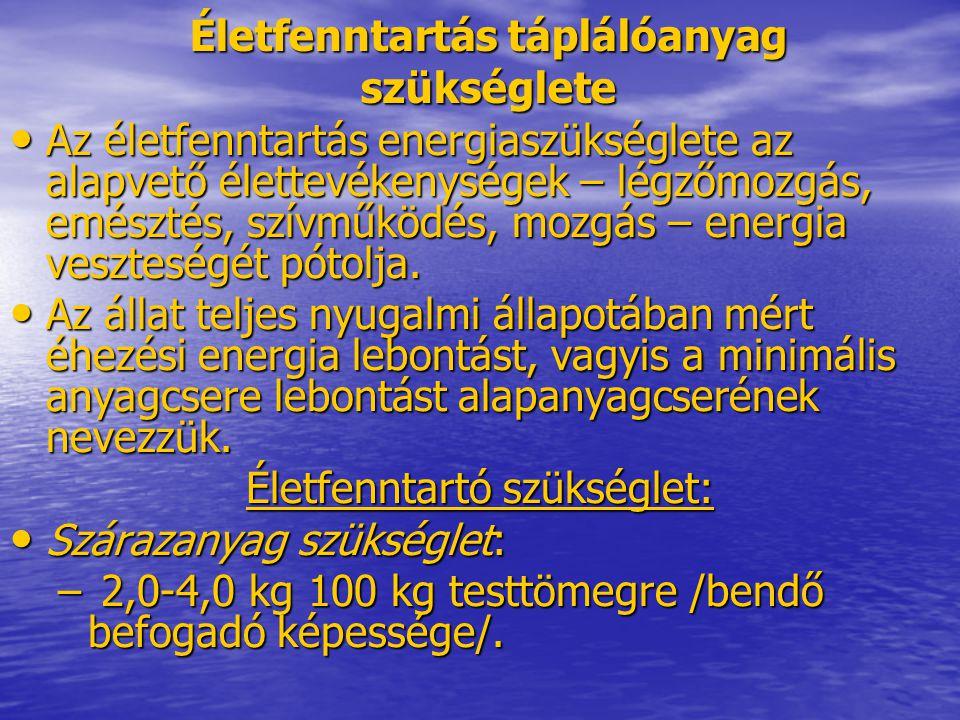 Életfenntartás táplálóanyag szükséglete Az életfenntartás energiaszükséglete az alapvető élettevékenységek – légzőmozgás, emésztés, szívműködés, mozgá