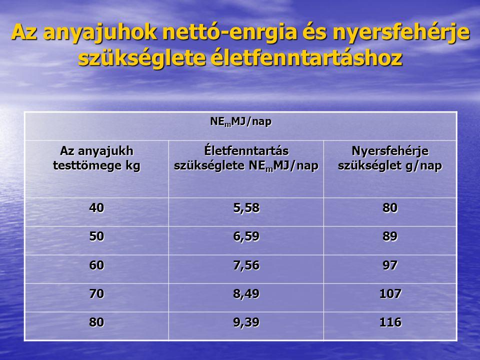 Az anyajuhok nettó-enrgia és nyersfehérje szükséglete életfenntartáshoz NE m MJ/nap Az anyajukh testtömege kg Életfenntartás szükséglete NE m MJ/nap N