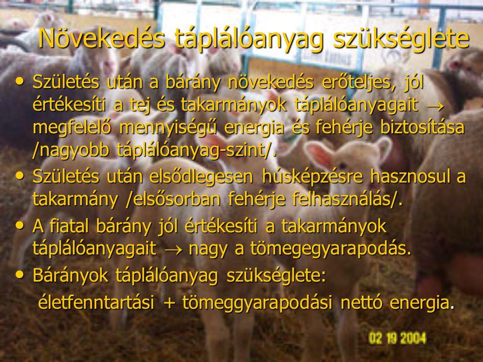 Növekedés táplálóanyag szükséglete Születés után a bárány növekedés erőteljes, jól értékesíti a tej és takarmányok táplálóanyagait  megfelelő mennyis