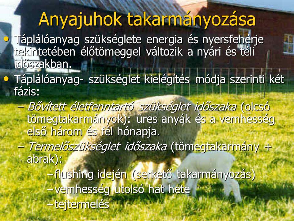 Anyajuhok takarmányozása Táplálóanyag szükséglete energia és nyersfehérje tekintetében élőtömeggel változik a nyári és téli időszakban. Táplálóanyag s