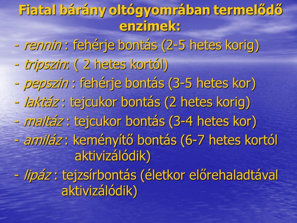 Ásványianyag-szükséglet Makroelem szükséglet: Makroelem szükséglet: - Ca (100 kg testtömegre 4,4 g), - P (100 kg testtömegre 3,4 g), - Na (2,0 g/takarmány- szárazanyag kg), - S:N (1:10).