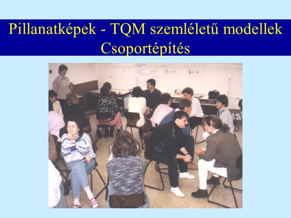 Pillanatképek - TQM szemléletű modellek Csoportépítés