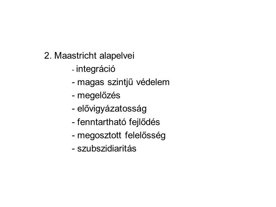 2. Maastricht alapelvei - integráció - magas szintjű védelem - megelőzés - elővigyázatosság - fenntartható fejlődés - megosztott felelősség - szubszid