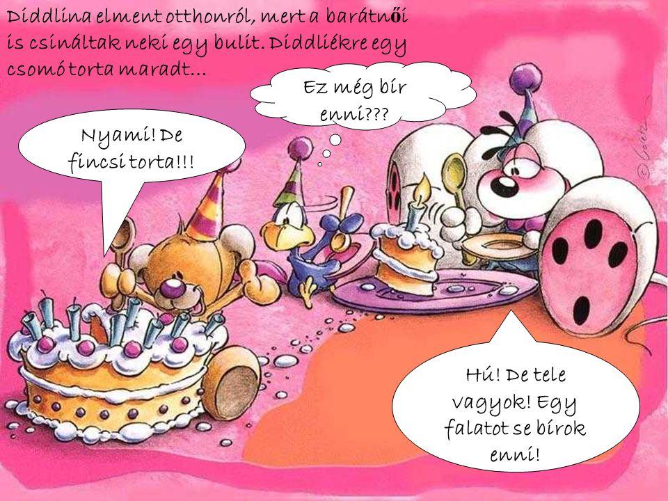 Diddlina elment otthonról, mert a barátn ő i is csináltak neki egy bulit. Diddliékre egy csomó torta maradt… Hú! De tele vagyok! Egy falatot se bírok