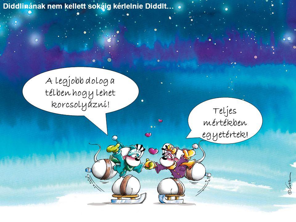 Diddlinának nem kellett sokáig kérlelnie Diddlt… A legjobb dolog a télben hogy lehet korcsolyázni! Teljes mértékben egyetértek !