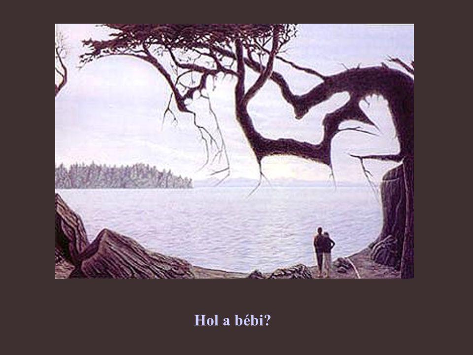 Hol a bébi?