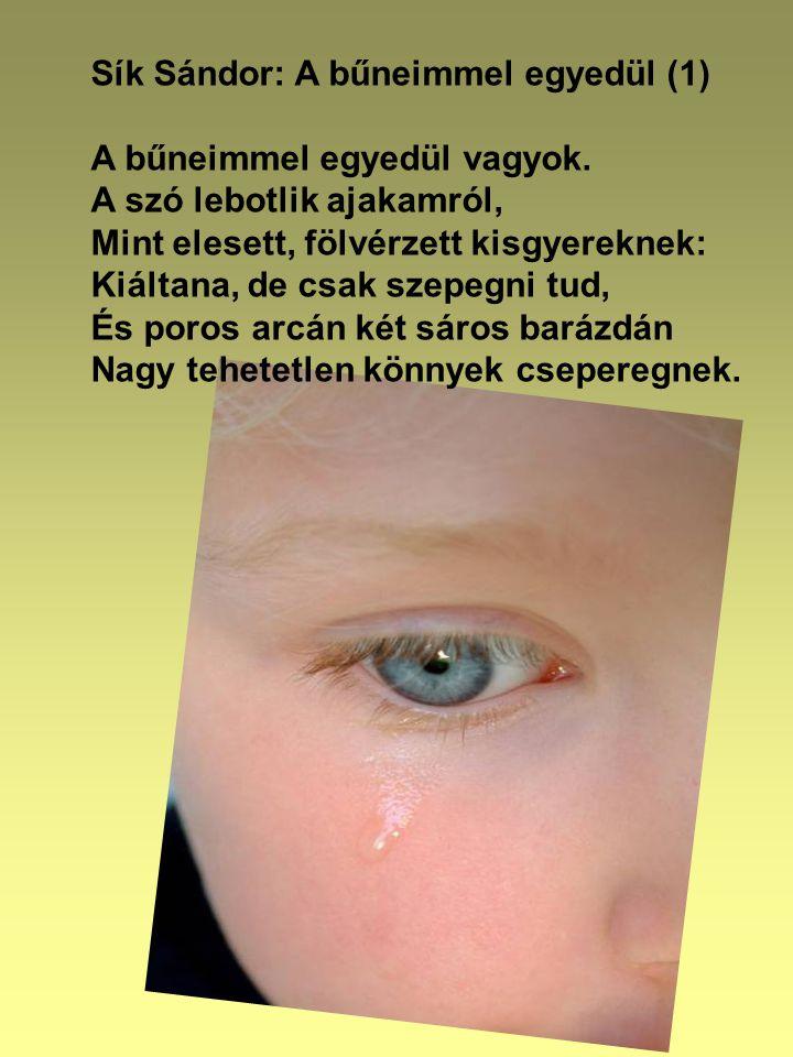 Sík Sándor: A bűneimmel egyedül (1) A bűneimmel egyedül vagyok.