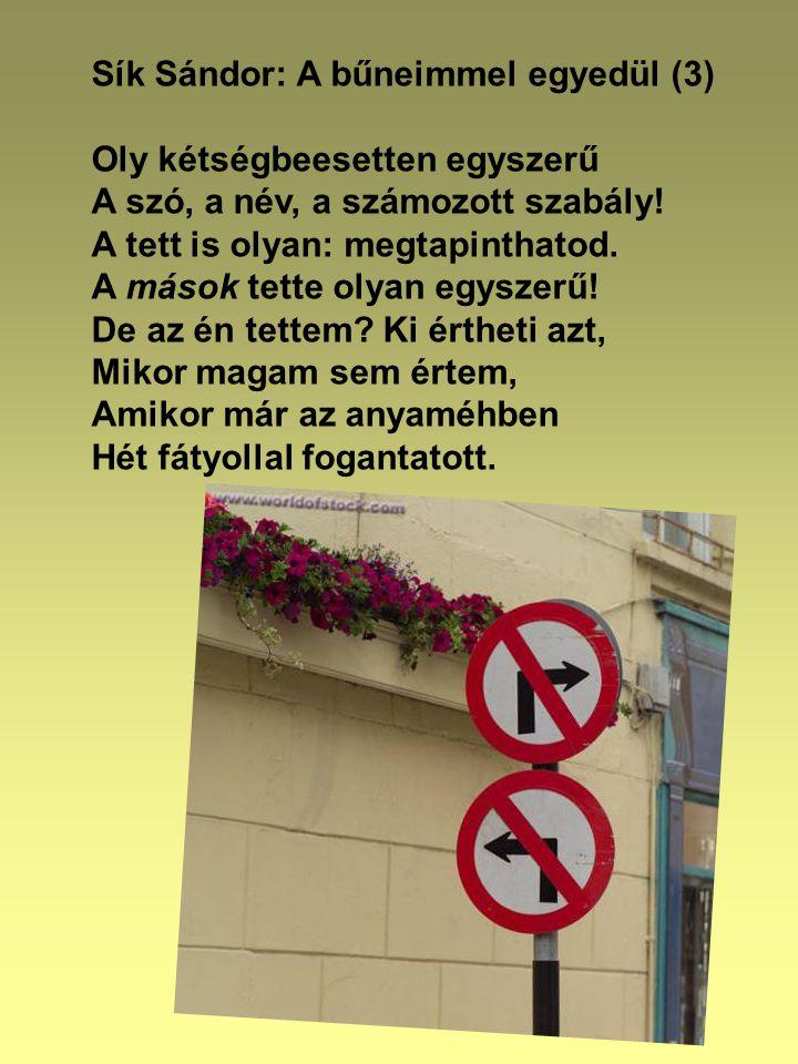 Sík Sándor: A bűneimmel egyedül (3) Oly kétségbeesetten egyszerű A szó, a név, a számozott szabály.