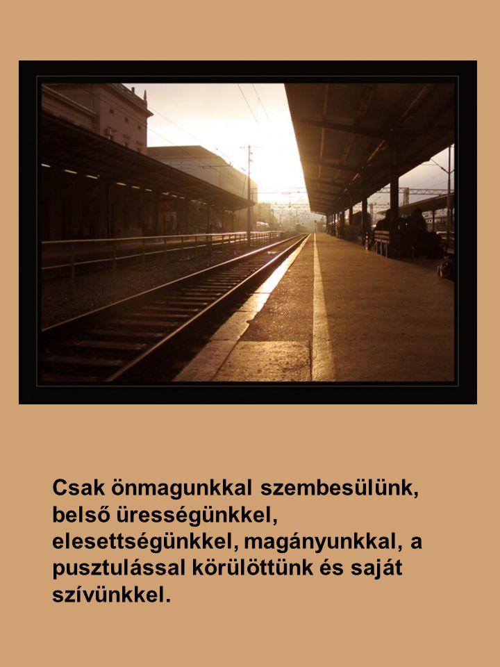 Sík Sándor: A bűneimmel egyedül (2) Ó, hogy ismertem jót és rosszat egykor.