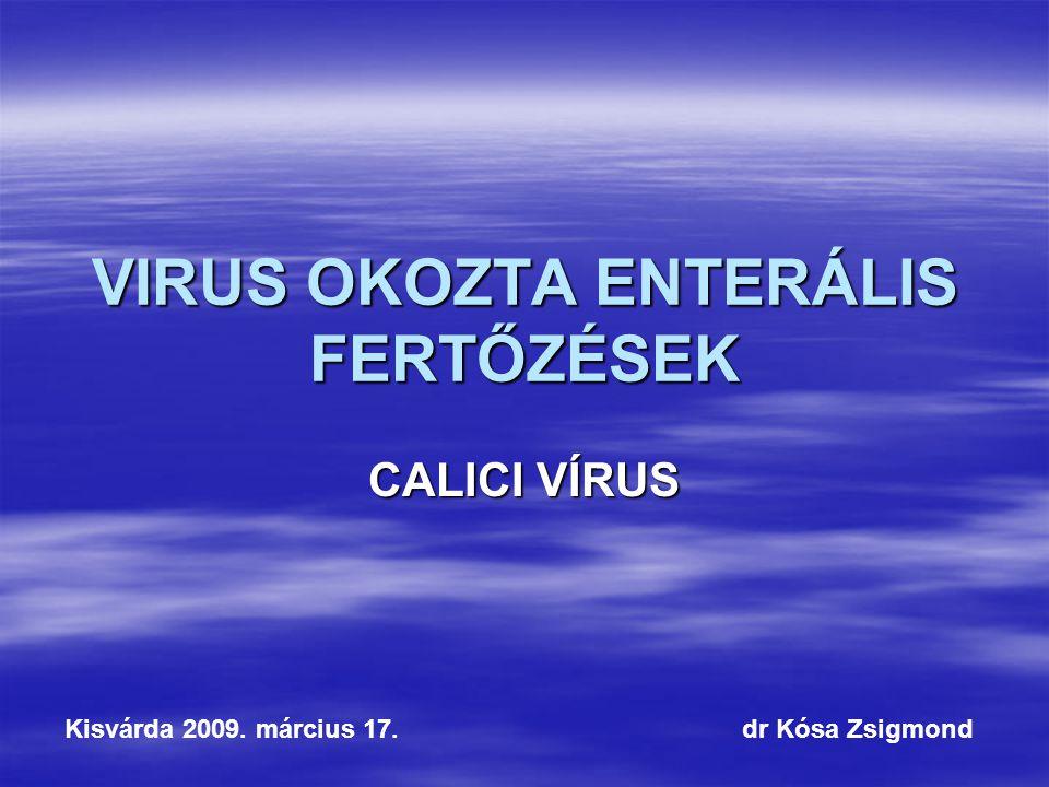VIRUS OKOZTA ENTERÁLIS FERTŐZÉSEK CALICI VÍRUS Kisvárda 2009. március 17. dr Kósa Zsigmond