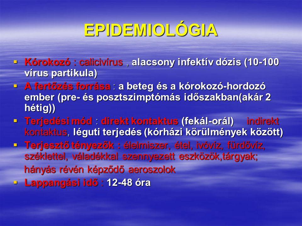 EPIDEMIOLÓGIA  Kórokozó : calicivírus, alacsony infektív dózis (10-100 vírus partikula)  A fertőzés forrása : a beteg és a kórokozó-hordozó ember (pre- és posztszimptómás időszakban(akár 2 hétig))  Terjedési mód : direkt kontaktus (fekál-orál) indirekt kontaktus, léguti terjedés (kórházi körülmények között)  Terjesztő tényezők : élelmiszer, étel, ivóvíz, fürdővíz, széklettel, váladékkal szennyezett eszközök,tárgyak; hányás révén képződő aeroszolok hányás révén képződő aeroszolok  Lappangási idő : 12-48 óra