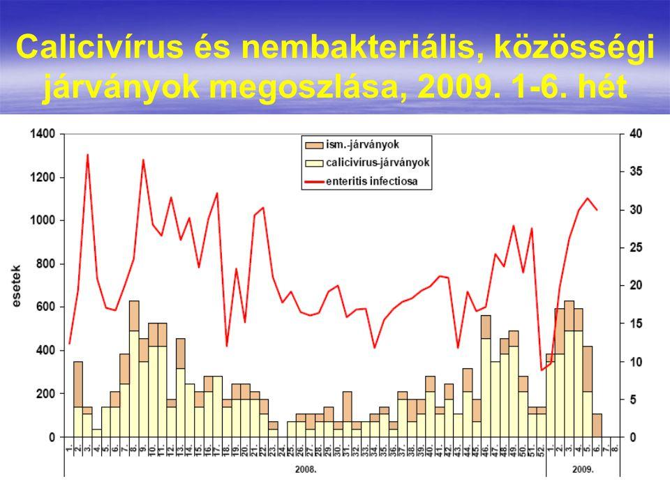 Calicivírus és nembakteriális, közösségi járványok megoszlása, 2009. 1-6. hét