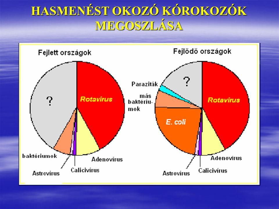  2006 első félévében mutatták ki először Magyarországon a calicivírus egyik új variánsát, melynek tulajdoníthatóan 2006-ban hazánkban is nagymértékben emelkedett az általa okozott járványok száma (tengerjáró luxushajók 25 járvány, 2648 beteg)  Módosult a calicivírus-cirkuláció jellegzetes szezonalitása is: míg 2005-ben – amikor a víruscirkuláció csak mérsékelt volt – a nyári időszakban csak elenyésző számban regisztráltak ilyen járványokat, addig 2006 április-májusát követően az eddig megszokottakkal ellentétben nem csökkent, hanem emelkedett ezen járványok száma  A 267 járvány 38%-a kórházakban, 30%-a idősotthonokban fordult elő  A járványok 60%-a kontakt módon terjedt