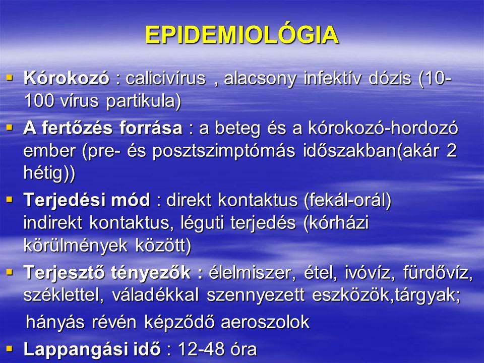 EPIDEMIOLÓGIA  Kórokozó : calicivírus, alacsony infektív dózis (10- 100 vírus partikula)  A fertőzés forrása : a beteg és a kórokozó-hordozó ember (pre- és posztszimptómás időszakban(akár 2 hétig))  Terjedési mód : direkt kontaktus (fekál-orál) indirekt kontaktus, léguti terjedés (kórházi körülmények között)  Terjesztő tényezők : élelmiszer, étel, ivóvíz, fürdővíz, széklettel, váladékkal szennyezett eszközök,tárgyak; hányás révén képződő aeroszolok hányás révén képződő aeroszolok  Lappangási idő : 12-48 óra