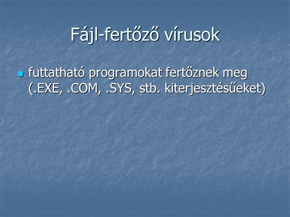 Fájl-fertőző vírusok futtatható programokat fertőznek meg (.EXE,.COM,.SYS, stb. kiterjesztésűeket) futtatható programokat fertőznek meg (.EXE,.COM,.SY