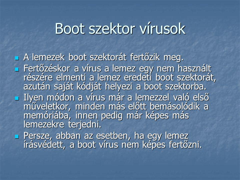 Boot szektor vírusok A lemezek boot szektorát fertőzik meg. A lemezek boot szektorát fertőzik meg. Fertőzéskor a vírus a lemez egy nem használt részér