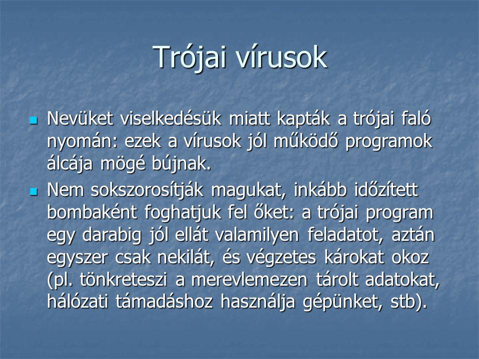 Trójai vírusok Nevüket viselkedésük miatt kapták a trójai faló nyomán: ezek a vírusok jól működő programok álcája mögé bújnak. Nevüket viselkedésük mi