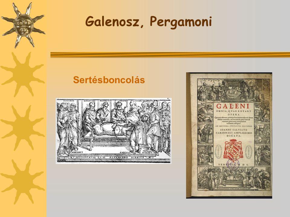 Galenosz, Pergamoni Sertésboncolás