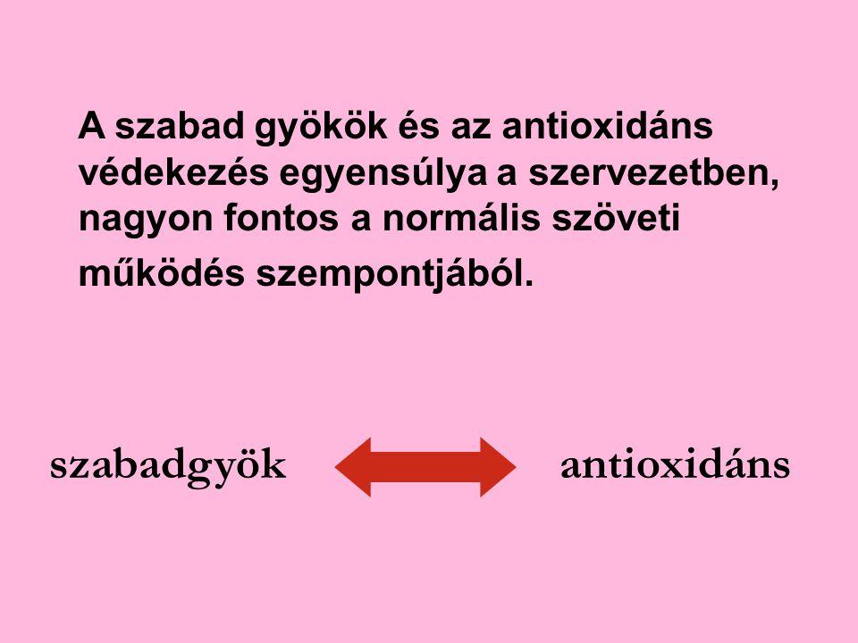szabadgyökantioxidáns A szabad gyökök és az antioxidáns védekezés egyensúlya a szervezetben, nagyon fontos a normális szöveti működés szempontjából.