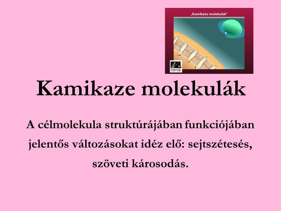 Hazánkban átlagos flavonoid bevitel: 19,5 mg/fő/nap A szükséges mennyiség 200-250 mg/fő/nap A növényi sejtekben is alapvető védelmi funkciót töltenek be.