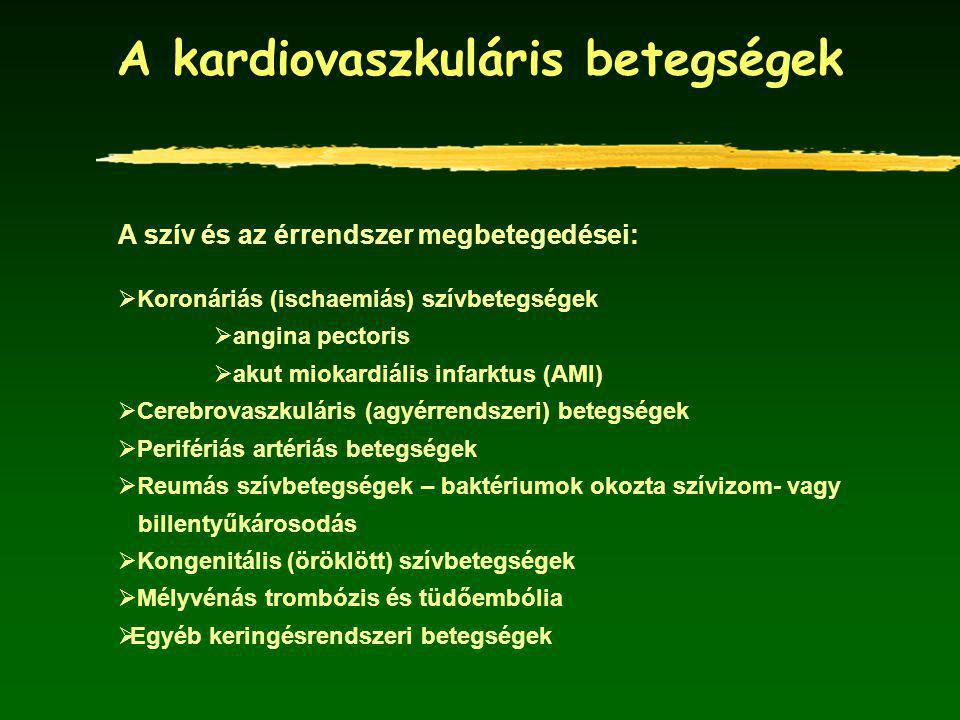 Az ISZB és az akut miokardiális infarktus (AMI) halálozás relatív kockázatának alakulása Magyarországon a francia halálozási szinttel szemben kor és nem szerint Forrás: www.nepegeszseg.hu