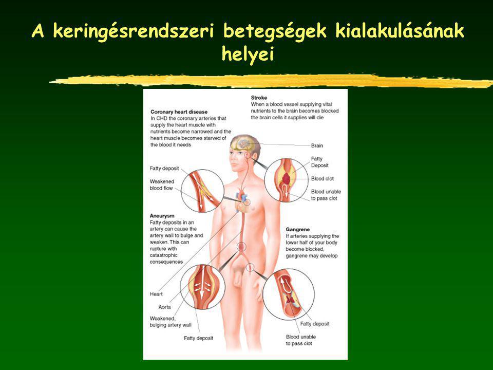 A keringésrendszeri betegségek kialakulásának helyei