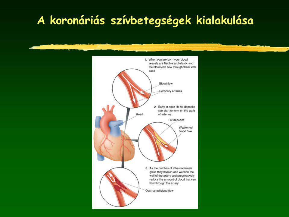 Kardiovaszkuláris betegségek megelőzése Populációs prevenciós stratégiák (elsődleges megelőzés) egészséges táplálkozás rendszeres testedzés dohányzás mellőzése alkoholfogyasztás mérséklése