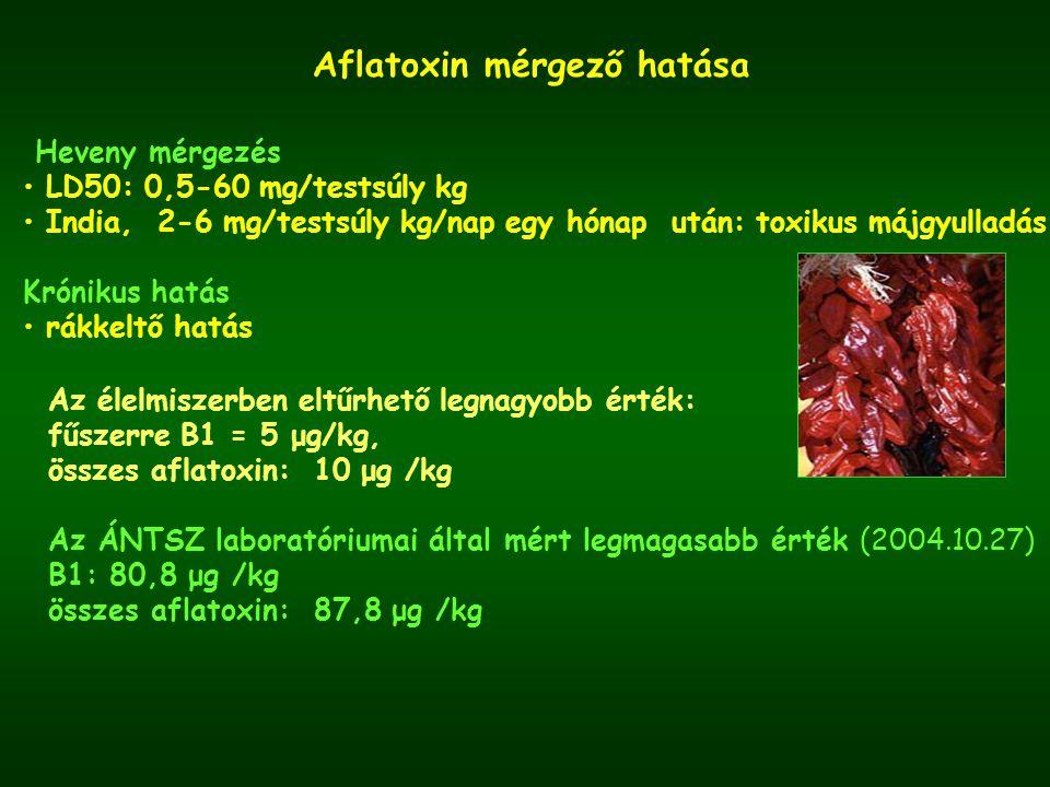 Aflatoxin mérgező hatása Heveny mérgezés LD50: 0,5-60 mg/testsúly kg India, 2-6 mg/testsúly kg/nap egy hónap után: toxikus májgyulladás Krónikus hatás rákkeltő hatás Az élelmiszerben eltűrhető legnagyobb érték: fűszerre B1 = 5 μg/kg, összes aflatoxin: 10 μg /kg Az ÁNTSZ laboratóriumai által mért legmagasabb érték (2004.10.27) B1: 80,8 μg /kg összes aflatoxin: 87,8 μg /kg